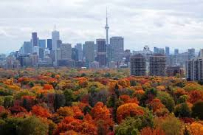 September Market Report - Toronto Real Estate Board