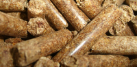 Wood Pellets and Fighting Climate Change