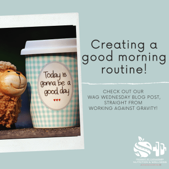 WAG Wednesday! Creating a Morning Routine.