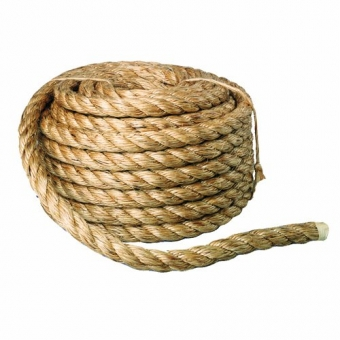 Have you ever used a rope and an audience member in a presentation to explain Alzheimer Disease? Why not?