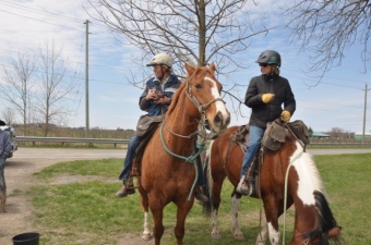 Horses, a country road and a barbecue #notl