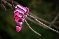 Tell me please - where do those lost socks get to?