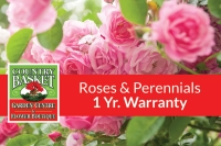 1-Year Warranty on Roses & Perennials