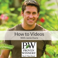 Jamie Durie Video: Front Door Container Gardens