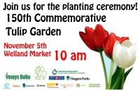 Public planting of 150th garden at Welland Farmers Market