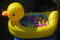 Ducks in the News Again - Kiwanis Duck Race No Go, Draw a Go!