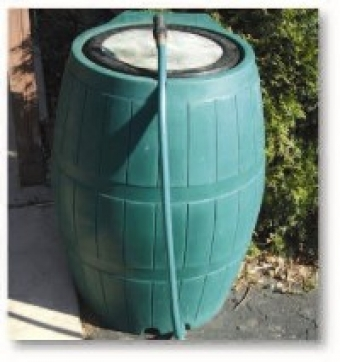 Rain Barrel Sale and Free Tree Giveaway Saturday, June 17