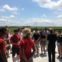 Daily Winery Tours All Summer Long!