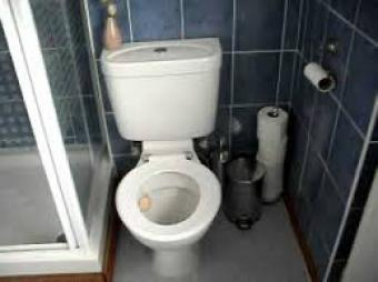 Blogging: What to write? Even toilets make it!