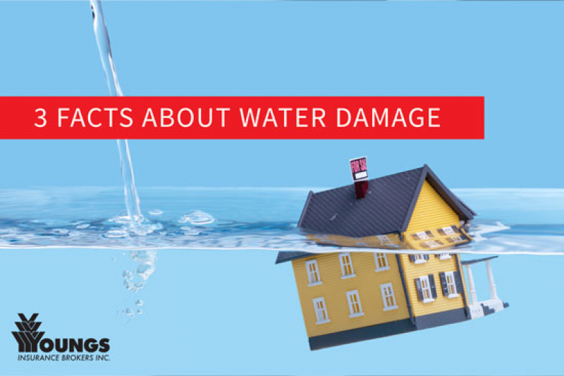 Three Facts About Water Damage In Canada