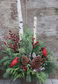 Outdoor Winter Decor Ideas