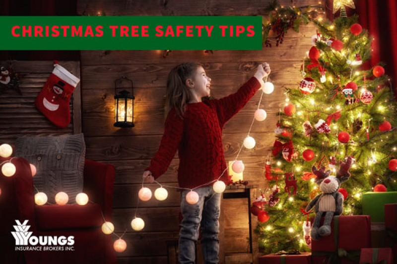 The Christmas Tree Debate: Real vs. Fake? Plus Christmas Tree Safety Tips
