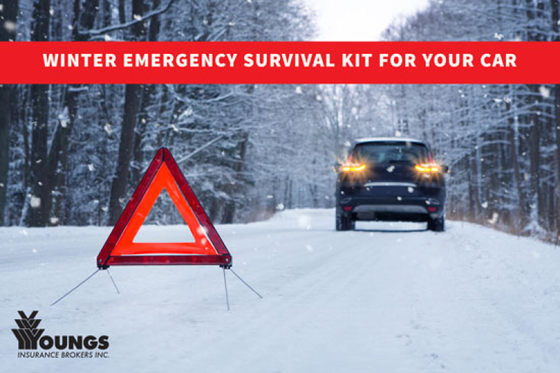 Winter Emergency Survival Kit for your Car
