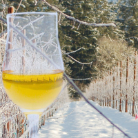 Visit PondView at the Niagara Ice Wine Festival