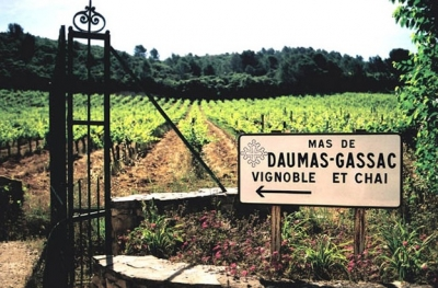 Mas de Daumas Gassac, the Grand Cru of the Languedoc