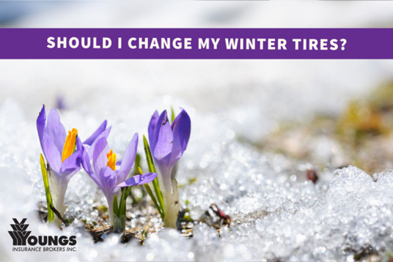 Should I Change My Winter Tires?
