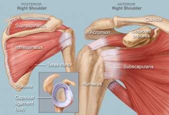 Recovery After Shoulder Injury ... Mistakes to Avoid