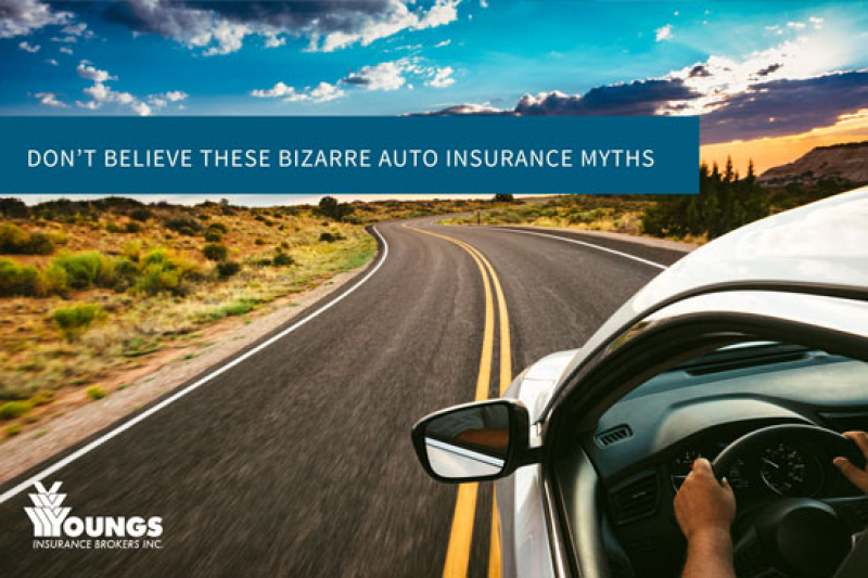 Don't Believe These Bizarre Auto Insurance Myths