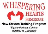 Whispering Hearts Horse Rescue Announces A New Program For WHHR Rescue Horses | The Rider Equestrian News