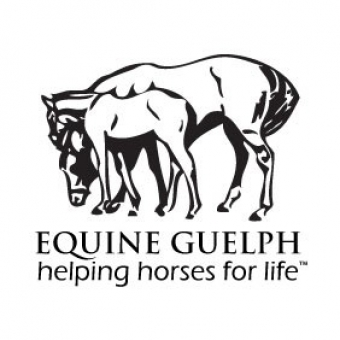 Perceptions of Welfare In The Canadian Horse Industry | University of Guelph | The Rider Equestrian News