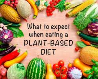 Everything You Need to Know About Eating Plant-based: Part 1