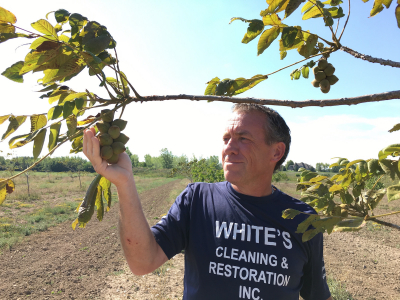 This Niagara nut farmer has heart