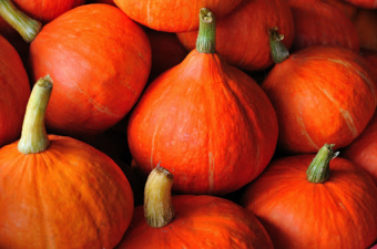 Recipe for a family bond: An ode to a pumpkin