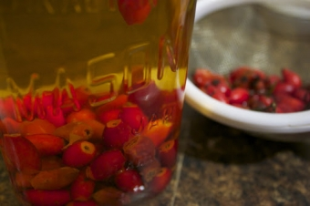 The vinegar vitae: Rose hip vinegar Part 1