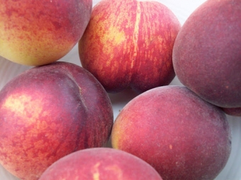 The Canadian Food Experience Project: A Niagara icon — the peach