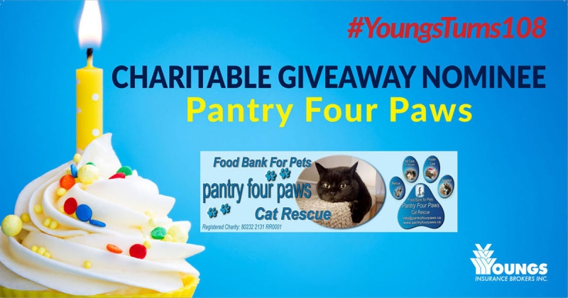 Youngs' 108th Birthday Charitable Nominee | Pantry Four Paws