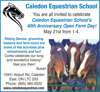 Caledon Equestrian School 40 years of Horse Love