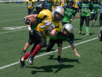 WOW - Action this weekend at Niagara Regional Minor Football League Games