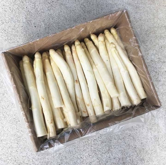 The Wonders of White Asparagus