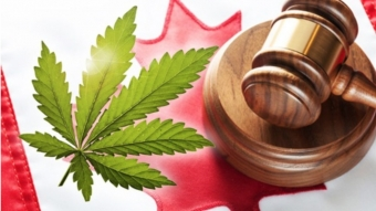 PREPARING YOUR WORKPLACE FOR CANNABIS LEGALIZATION