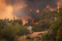 Wildfire Disaster Preparedness