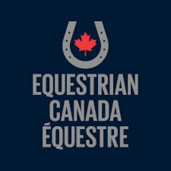 CANADIAN REINING TEAM TIES FOR NINTH AT THE FEI WORLD EQUESTRIAN