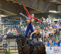 Vaulting Teamwork Makes the Dream Work for Canada's Final Performance at FEI World Equestrian Games™ Tryon 2018