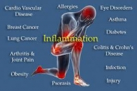 Fighting Inflammation with Food!
