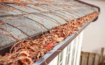 12 Tips for Home Maintenance this Fall