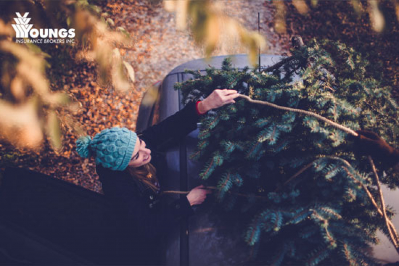 5 Wonderful Tips For Getting Your Christmas Tree Home Safely
