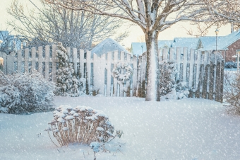 Winter Landscape Tips: How to Keep Your Landscape Looking Great All Year Long