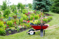 Front Yard Landscaping Tips: How to Plan Your Project