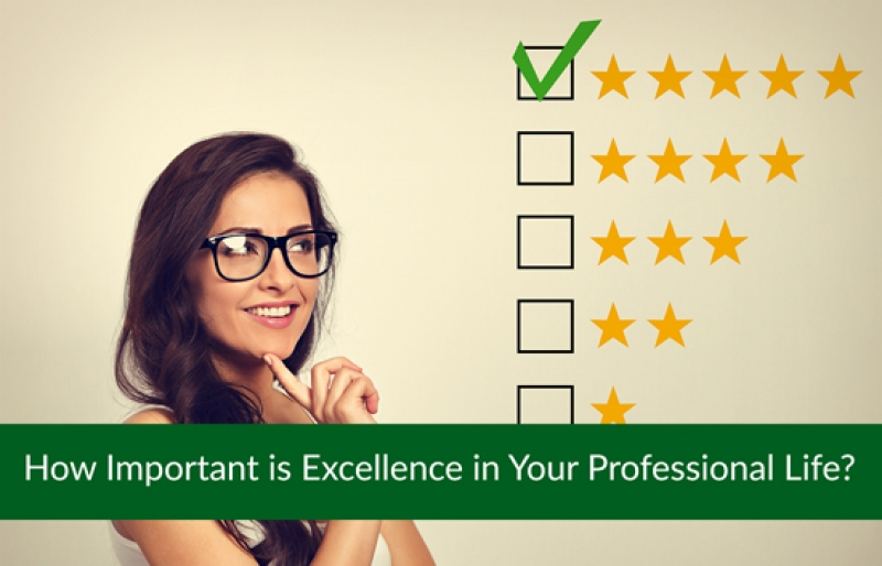 How Important is Excellence in Your Professional Life?