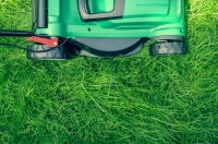 Summer is Around the Corner: How to Prepare Your Lawn for Summer