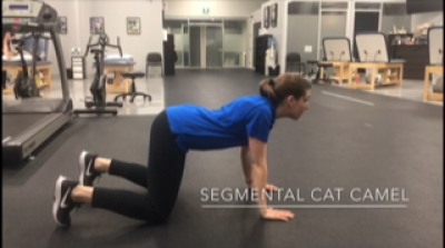 #FitnessFriday Ι Segmental Cat Camel