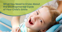 From Tooth Eruption to Permanent Teeth: What You Need to Know About the Developmental  Cycle of Your Child's Smile