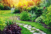 A Guide to Using Eye-Catching Focal Points in Garden Landscaping