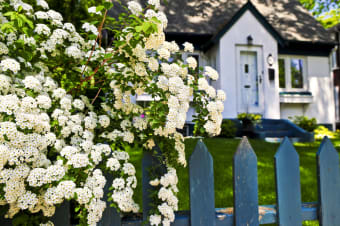 5 Tips on Choosing the Best House Fence Design for Your Home