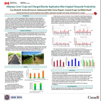 Alleyway Cover Crops and Charged Biochar Application Alter Irrigated Vineyards Productivity