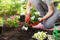 Can gardening or yardwork lead to injury?